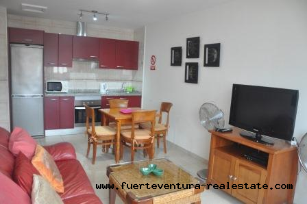 For sale! Nice apartment in Corralejo
