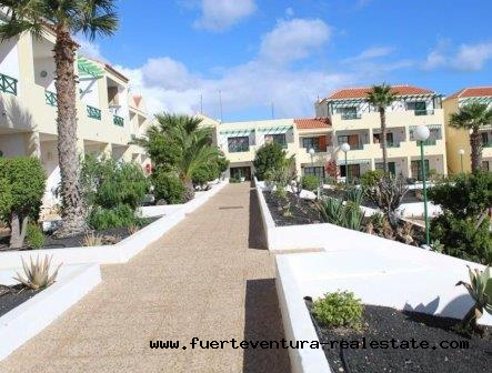 For Sale! Beautiful apartment with communal pool in Costa de Antigua