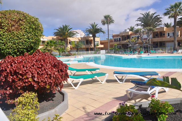 For sale! Nice apartment in a condominium with pool in Corralejo