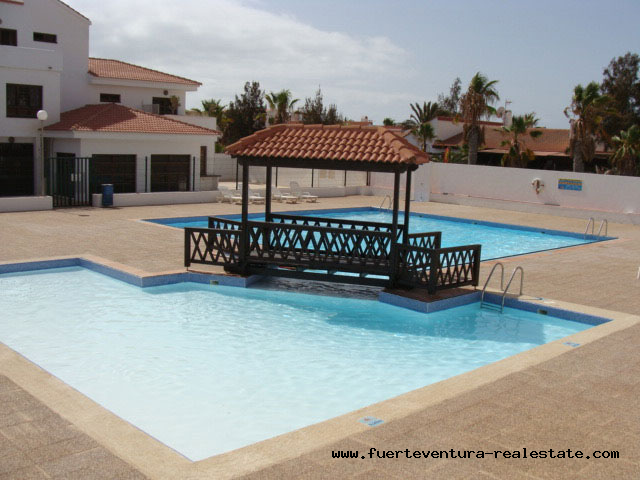 To rent! A pretty bungalow with shared pool at Parque Holandes in Fuerteventur