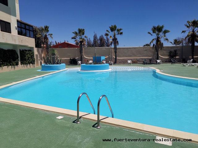 À louer! Un bel appartement à Parque Holandes Fuerteventura