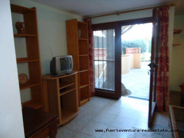 Te koop! Mooi appartement met 1 slaapkamer in het Los Pinos-complex in Corralejo.