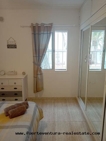 For sale! Cozy apartment in the residential complex Los Alisios in Corralejo
