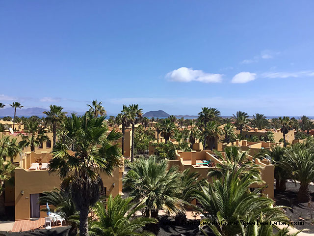 For sale! Cozy apartment in the Oasis Papagayo holiday complex in Corralejo on Fuerteventura