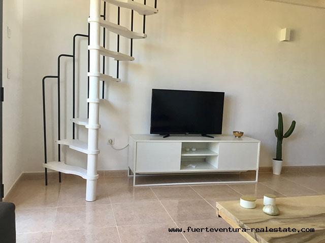 Im Verkauf! Gemütliche Wohnung in der Ferienanlage Oasis Papagayo in Corralejo auf Fuerteventura