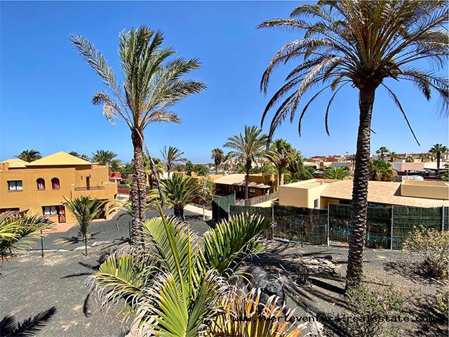 Te koop! Leuk appartement in het vakantiecomplex Oasis Papagayo in Corralejo op Fuerteventura