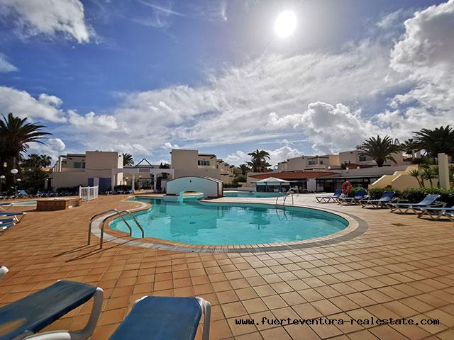 Eine hübsche kleine Wohnung wird in der  Anlage Los Alisios Playa in Corralejo verkauft