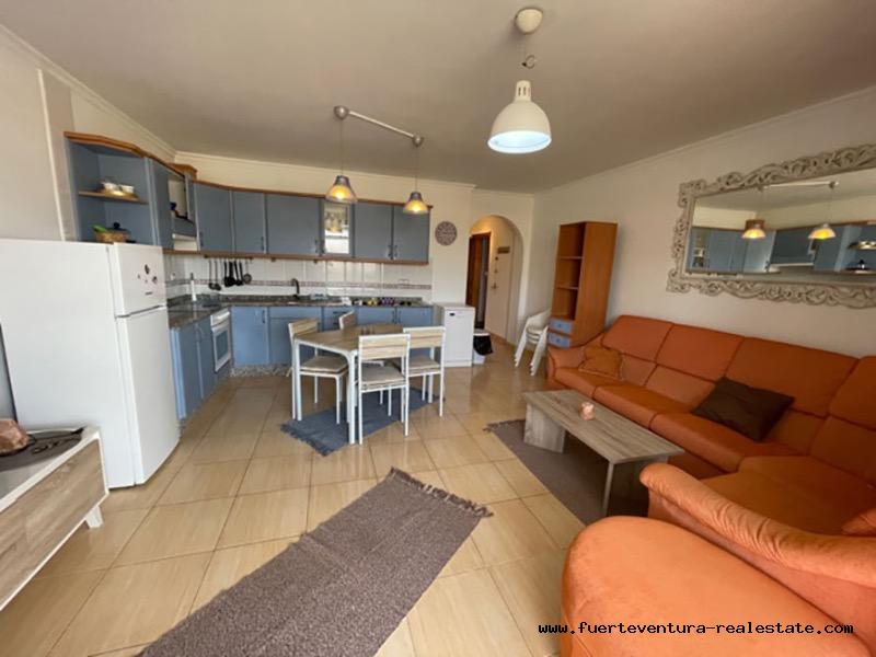 Wir vermieten ein sehr schönes Apartment in Puerto Lajas Fuerteventura
